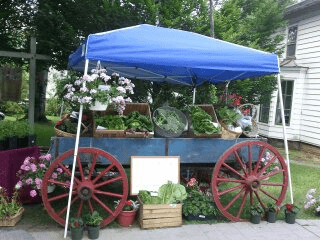 Larrywaug Brook Farm